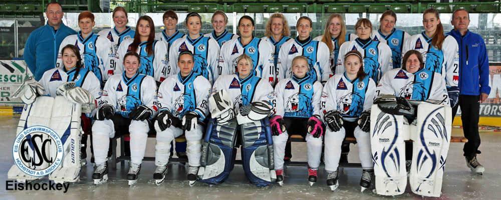 eishockey banner1